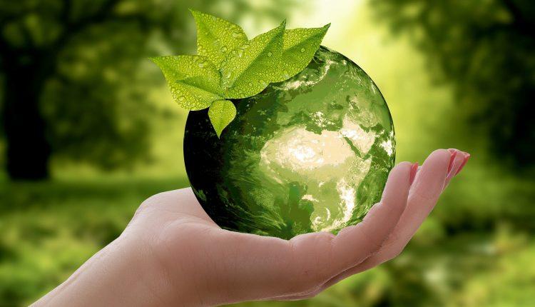 10 apps para llevar una vida más sostenible