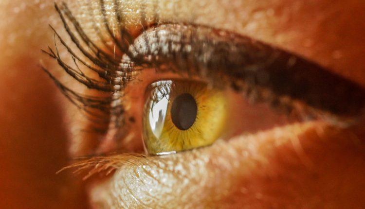 ¿Tienes las pupilas grandes? Estudios señalan que eres más inteligente